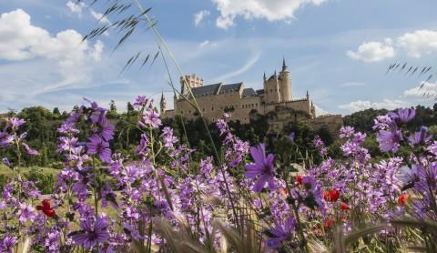 Segovia, Segovia
